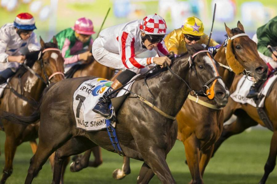 Dubai World Cup beIN SPORTS
